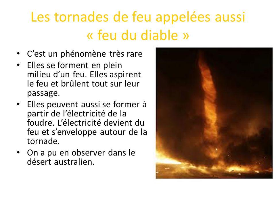 Les tornades de feu appelées aussi « feu du diable »