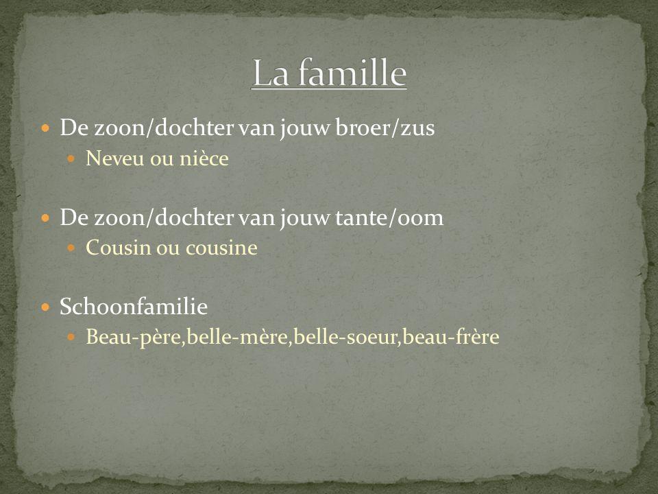 La famille De zoon/dochter van jouw broer/zus