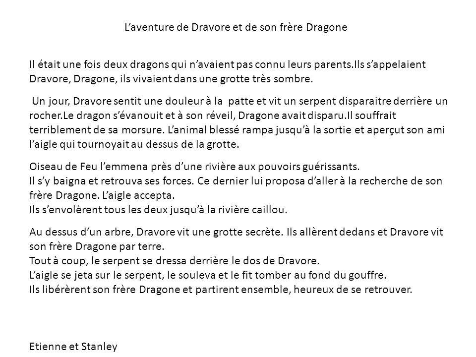 L'aventure de Dravore et de son frère Dragone