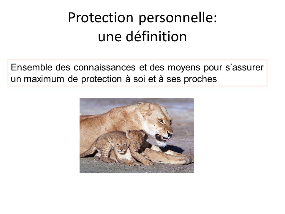 Protection personnelle: une définition