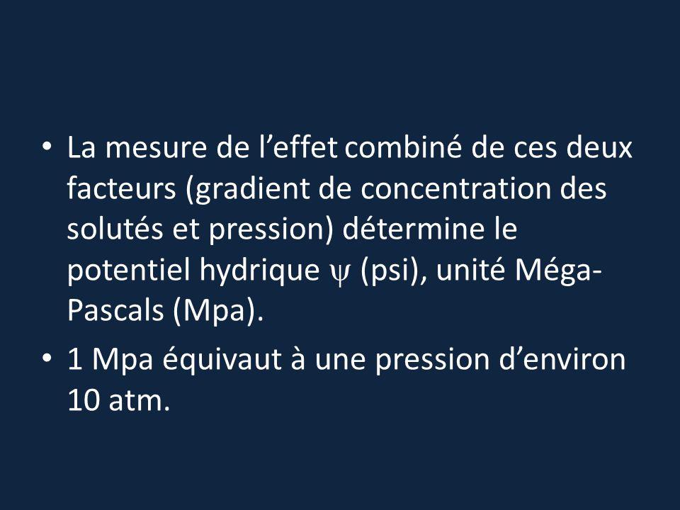 La mesure de l'effet combiné de ces deux facteurs (gradient de concentration des solutés et pression) détermine le potentiel hydrique y (psi), unité Méga-Pascals (Mpa).