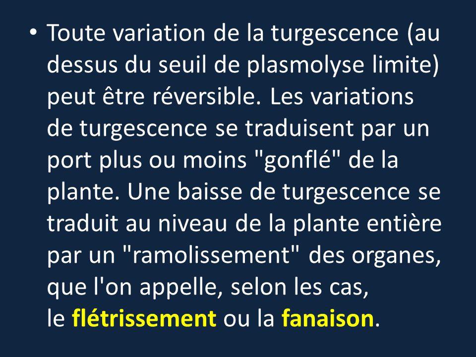 Toute variation de la turgescence (au dessus du seuil de plasmolyse limite) peut être réversible.