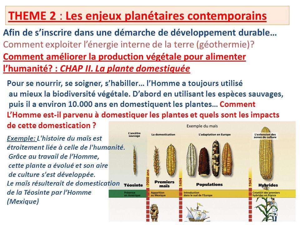 THEME 2 : Les enjeux planétaires contemporains