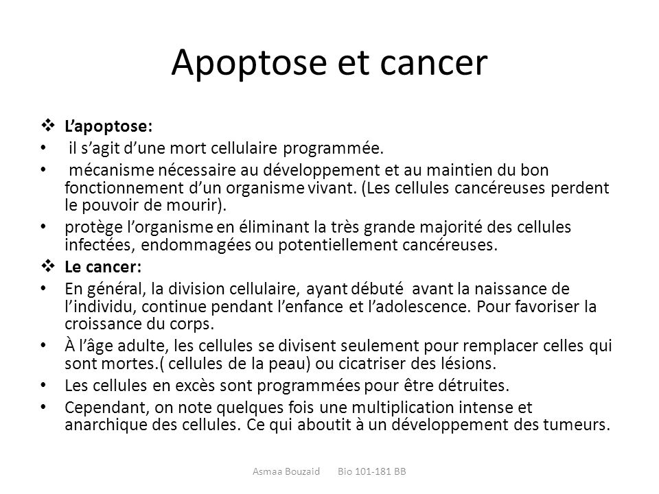 Apoptose et cancer L'apoptose: