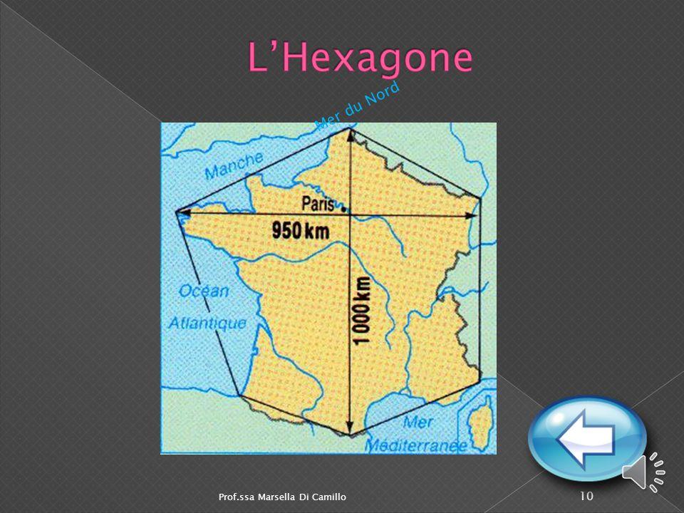 L'Hexagone Mer du Nord Prof.ssa Marsella Di Camillo