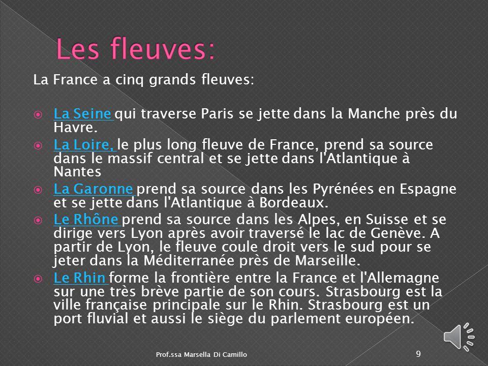 Les fleuves: La France a cinq grands fleuves: