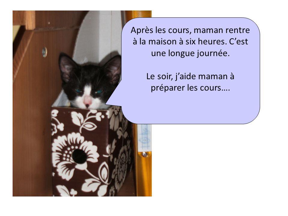 Le soir, j'aide maman à préparer les cours….