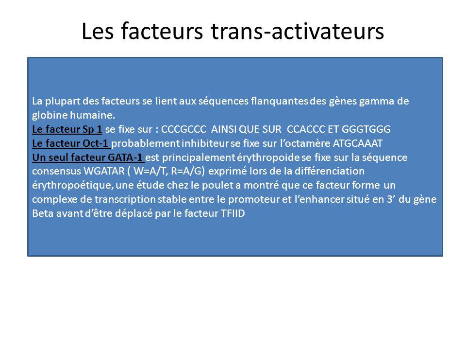 Les facteurs trans-activateurs