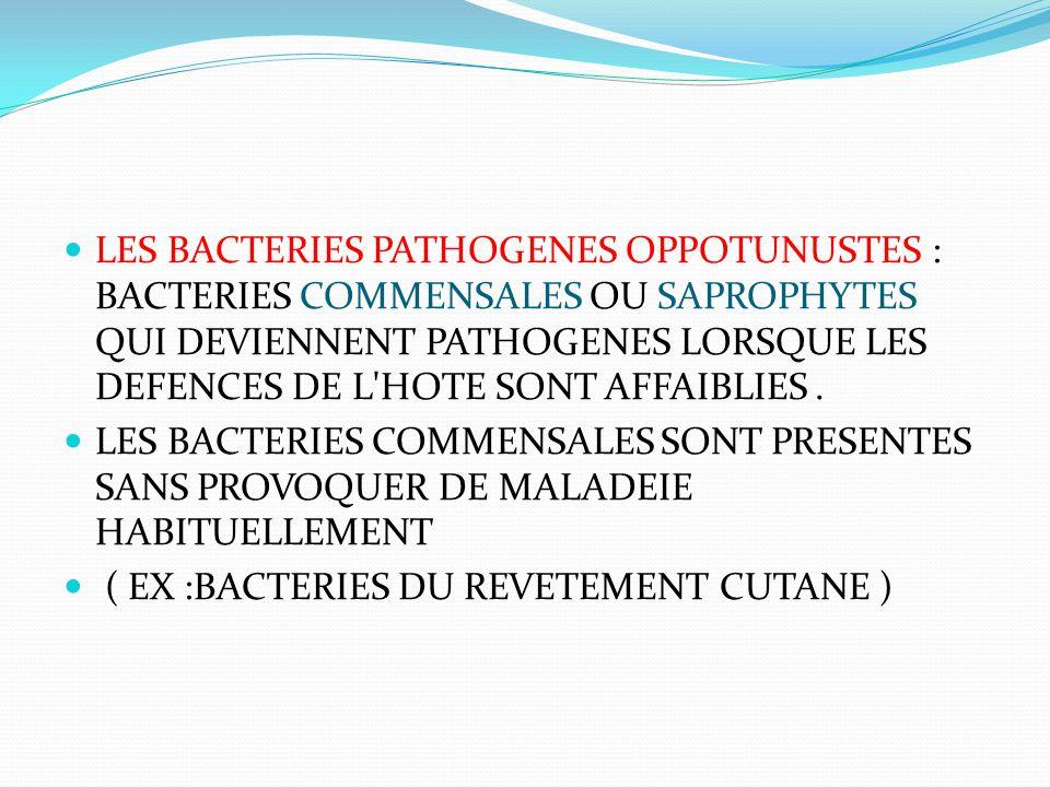 LES BACTERIES PATHOGENES OPPOTUNUSTES : BACTERIES COMMENSALES OU SAPROPHYTES QUI DEVIENNENT PATHOGENES LORSQUE LES DEFENCES DE L HOTE SONT AFFAIBLIES .