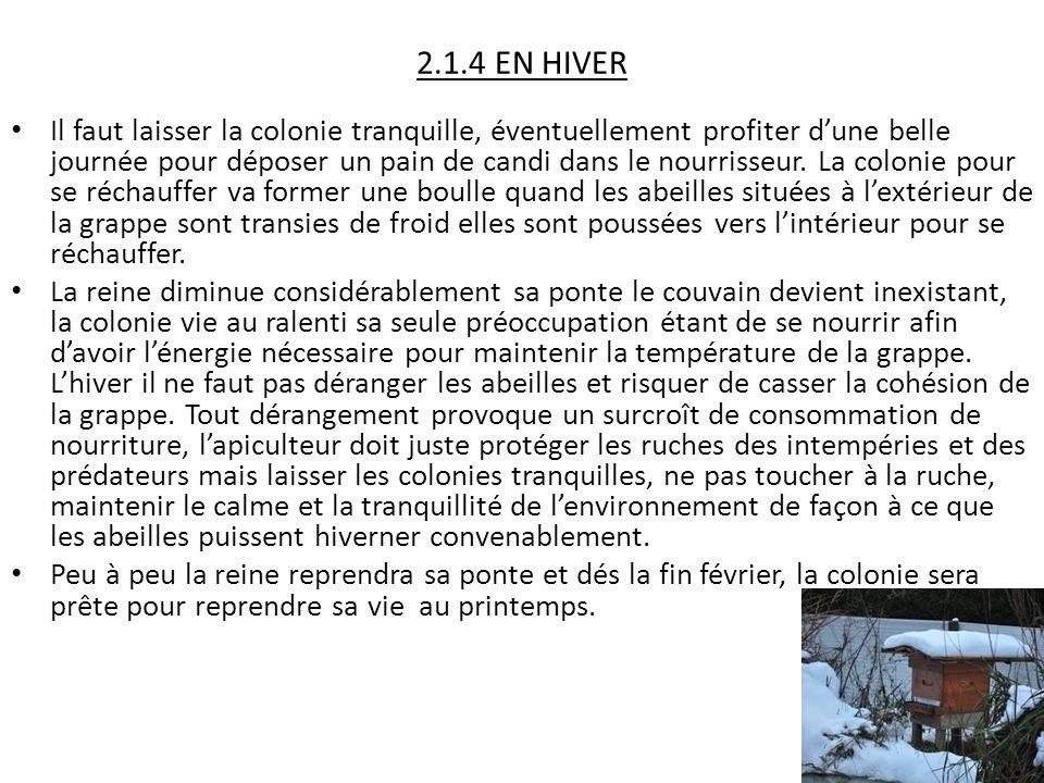 2.1.4 EN HIVER