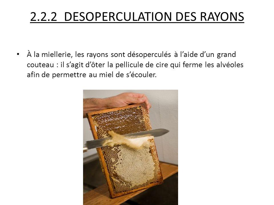 2.2.2 DESOPERCULATION DES RAYONS