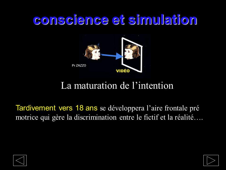 conscience et simulation