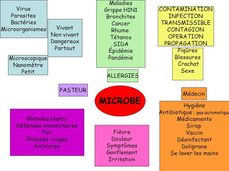 MICROBE Virus Parasites Bactéries Microorganismes Maladies Grippe H1N1