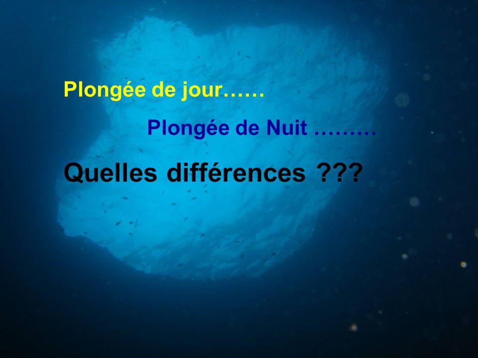 Plongée de jour…… Plongée de Nuit ……… Quelles différences
