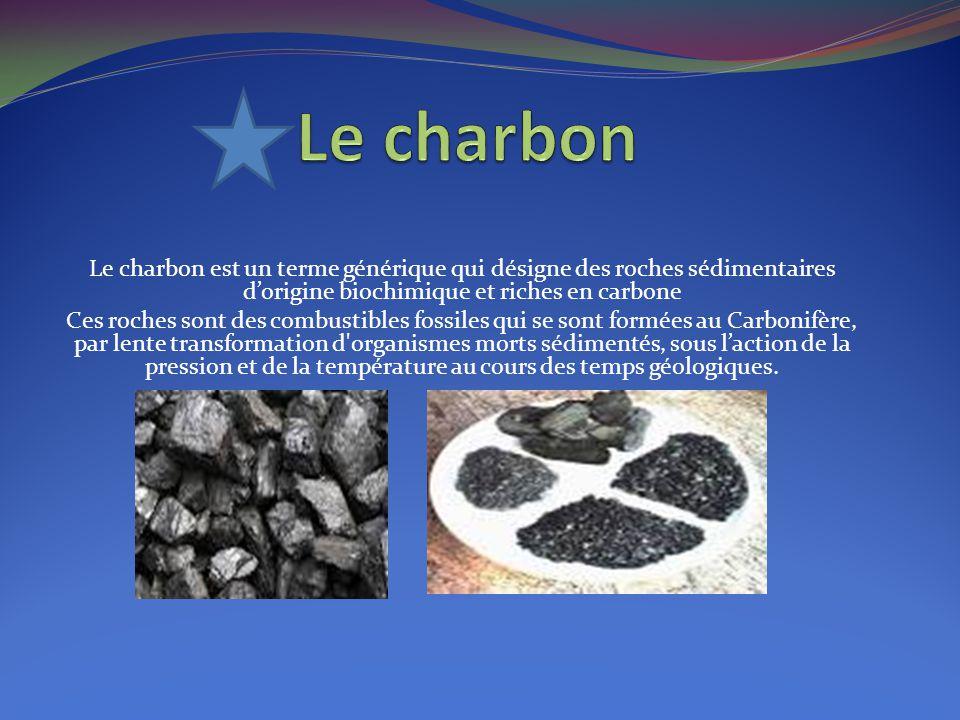 Le charbon Le charbon est un terme générique qui désigne des roches sédimentaires d'origine biochimique et riches en carbone.