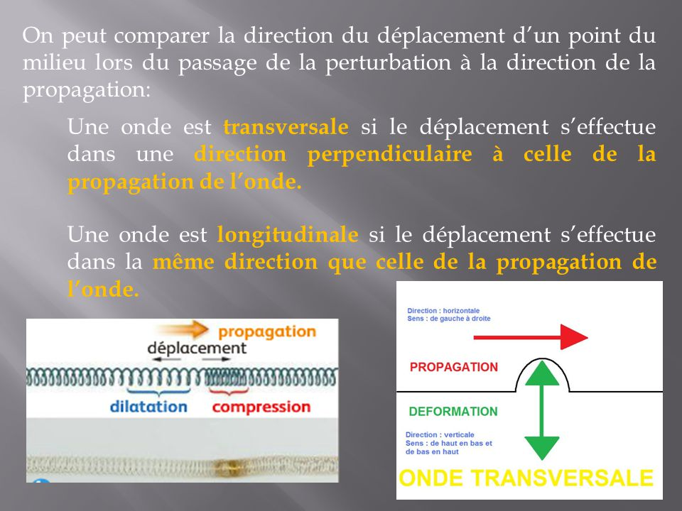 On peut comparer la direction du déplacement d'un point du milieu lors du passage de la perturbation à la direction de la propagation: