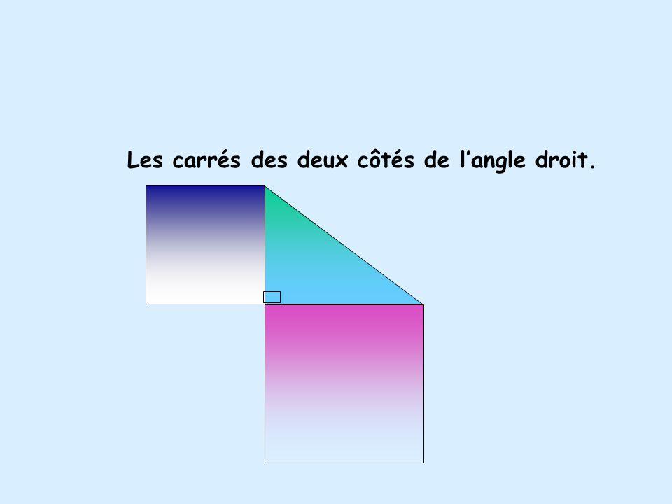 Les carrés des deux côtés de l'angle droit.