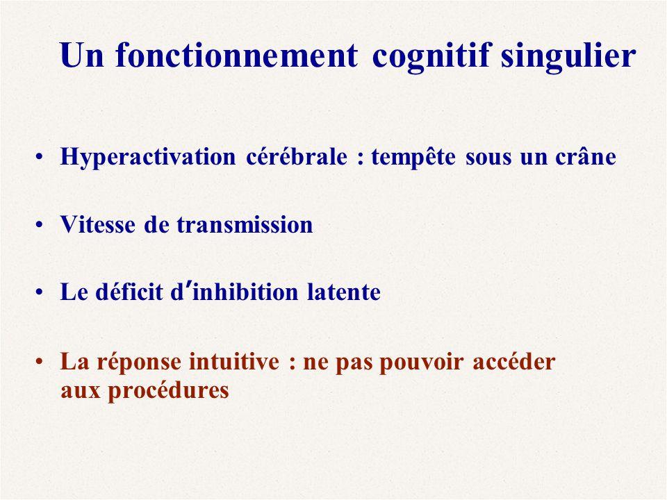 Un fonctionnement cognitif singulier