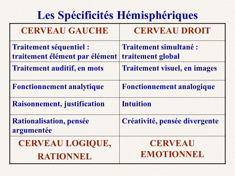 Les Spécificités Hémisphériques