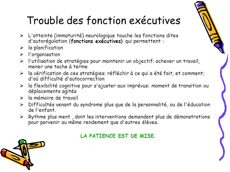Trouble des fonction exécutives