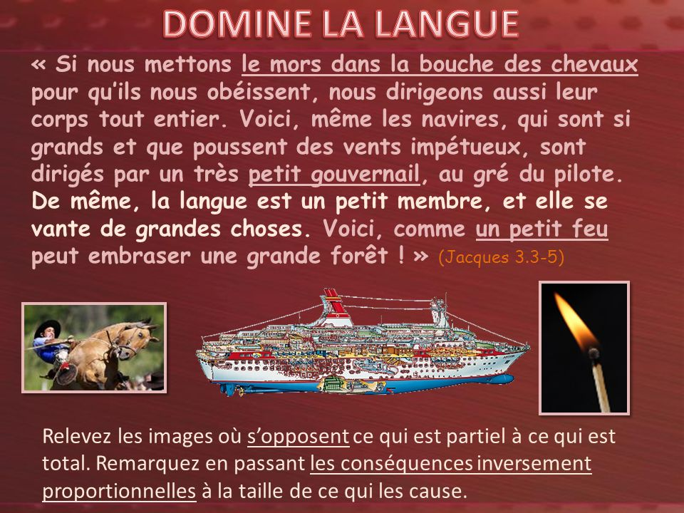 DOMINE LA LANGUE