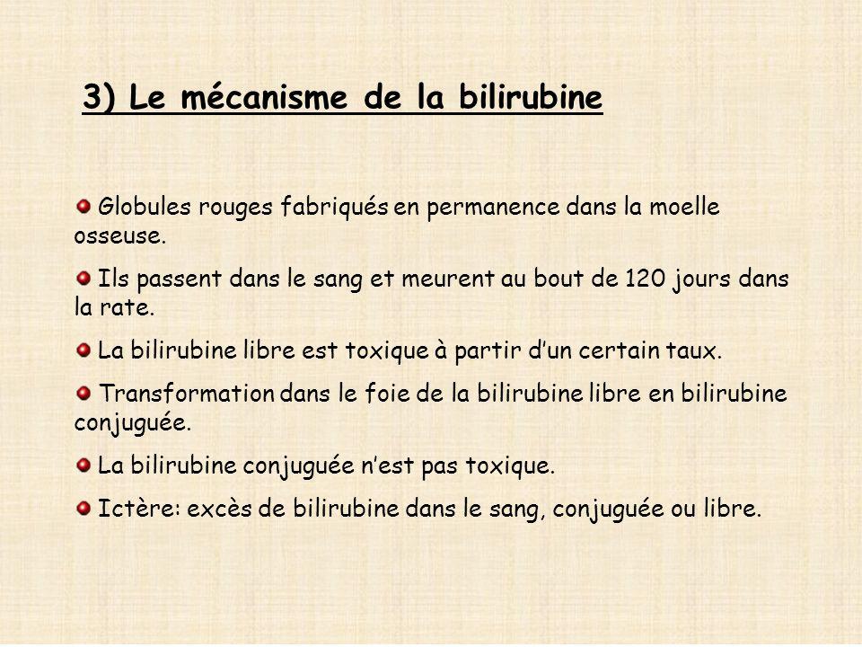 3) Le mécanisme de la bilirubine