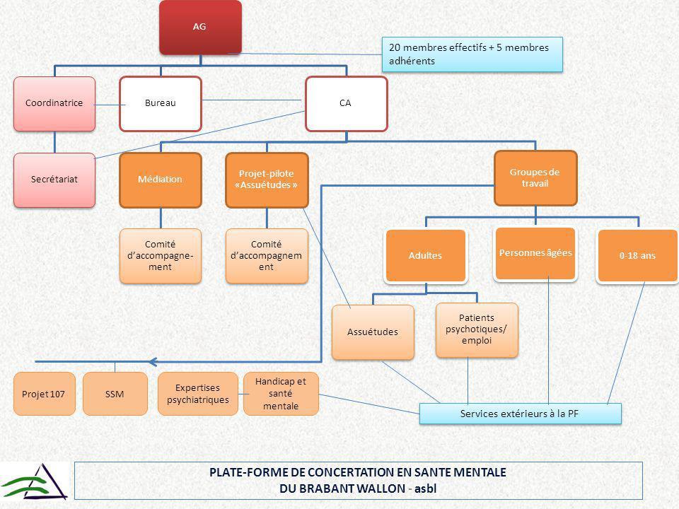PLATE-FORME DE CONCERTATION EN SANTE MENTALE DU BRABANT WALLON - asbl