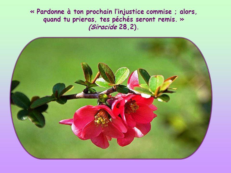 « Pardonne à ton prochain l'injustice commise ; alors, quand tu prieras, tes péchés seront remis. » (Siracide 28,2).