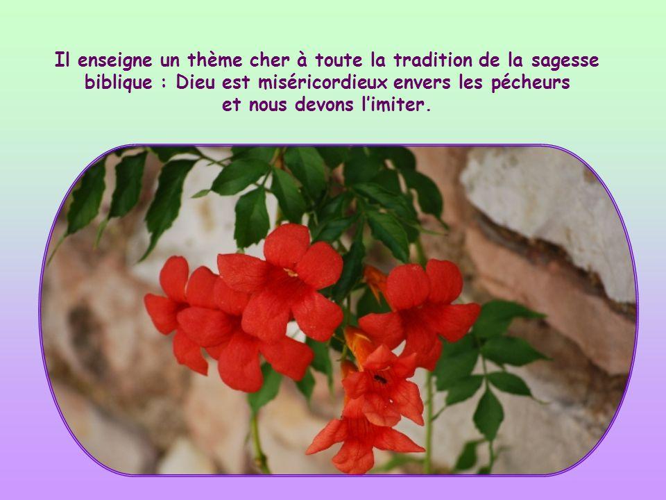 Il enseigne un thème cher à toute la tradition de la sagesse biblique : Dieu est miséricordieux envers les pécheurs et nous devons l'imiter.