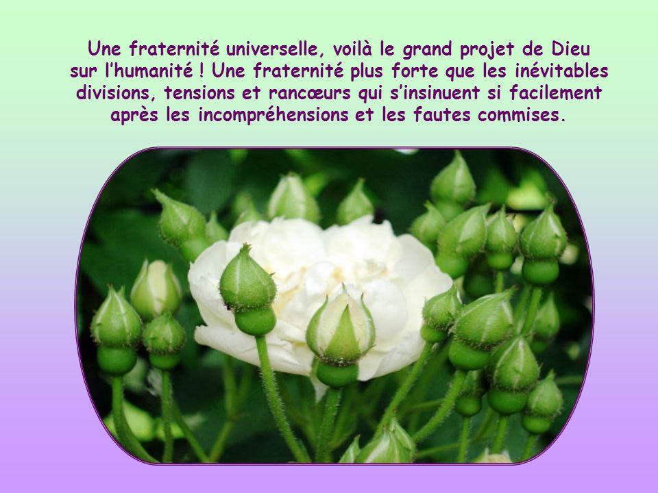 Une fraternité universelle, voilà le grand projet de Dieu