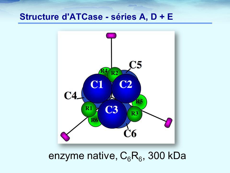 Structure d ATCase - séries A, D + E