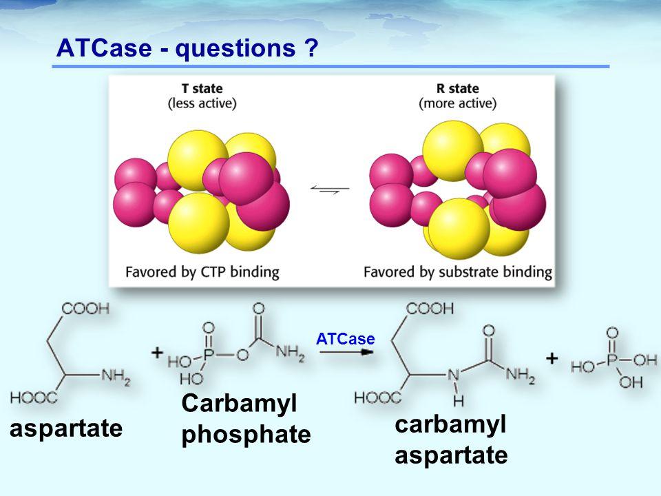 ATCase - questions Carbamyl phosphate carbamylaspartate aspartate