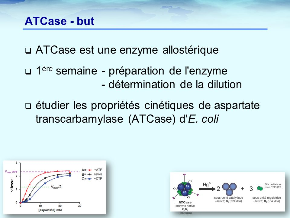 ATCase est une enzyme allostérique