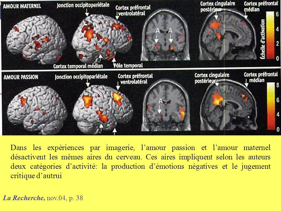 Dans les expériences par imagerie, l'amour passion et l'amour maternel désactivent les mêmes aires du cerveau. Ces aires impliquent selon les auteurs deux catégories d'activité: la production d'émotions négatives et le jugement critique d'autrui