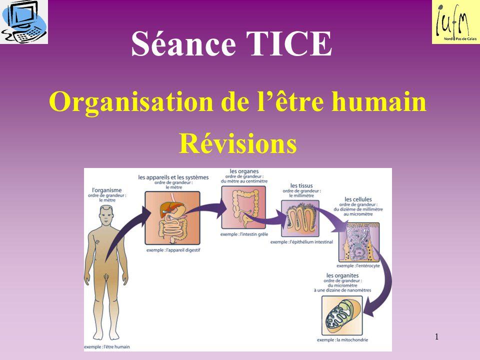 Organisation de l'être humain Révisions