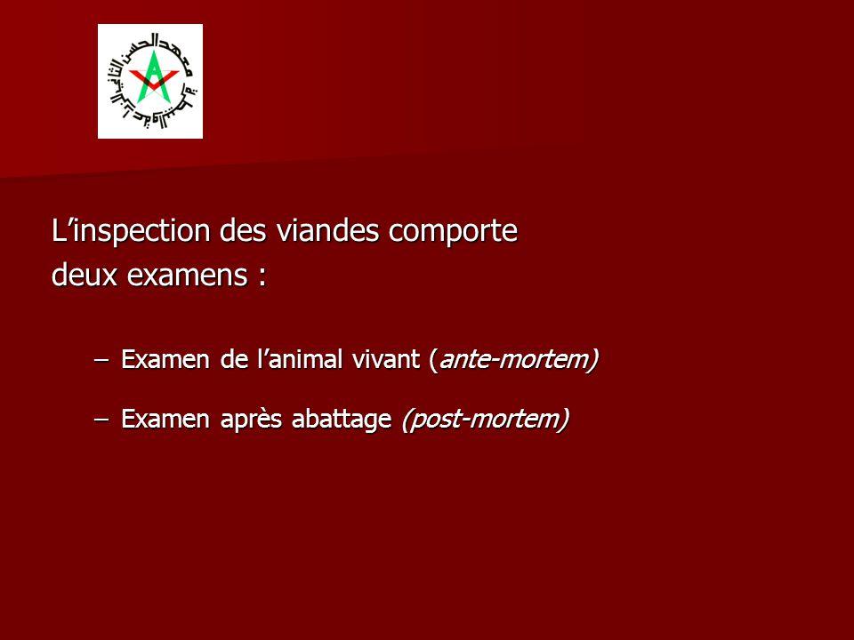 L'inspection des viandes comporte deux examens :