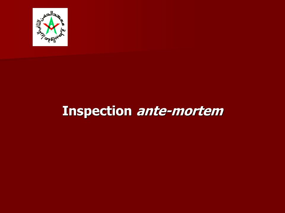 Inspection ante-mortem