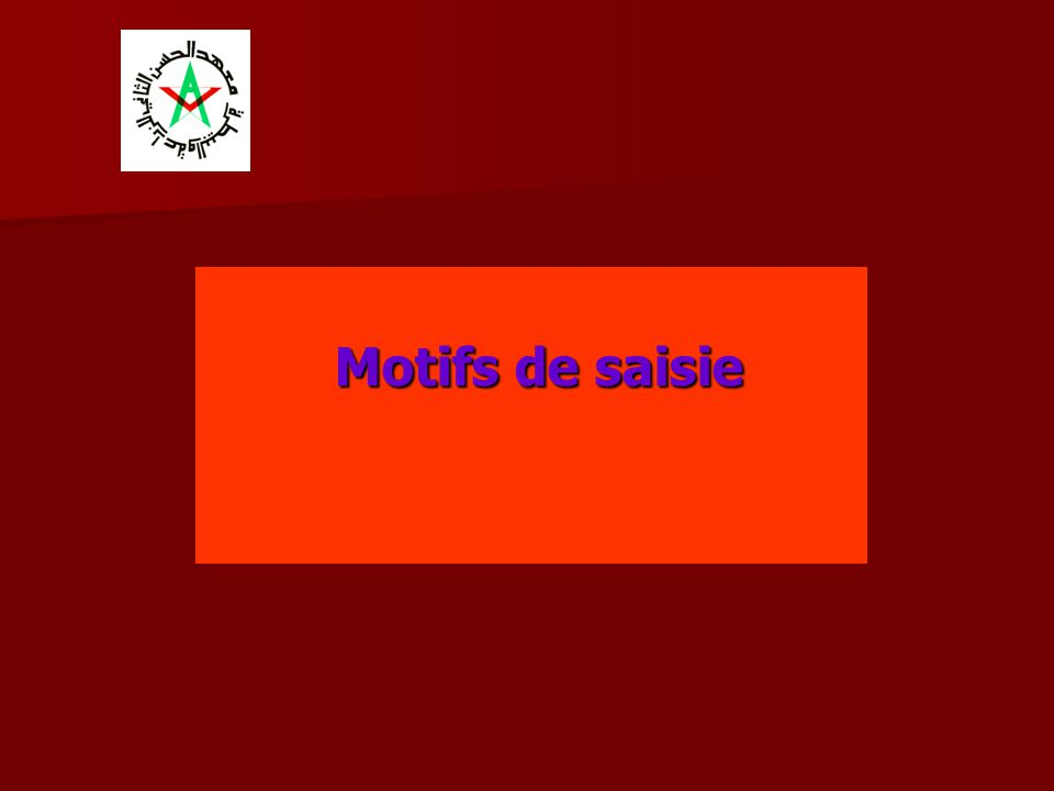 Motifs de saisie
