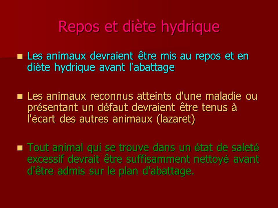 Repos et diète hydrique