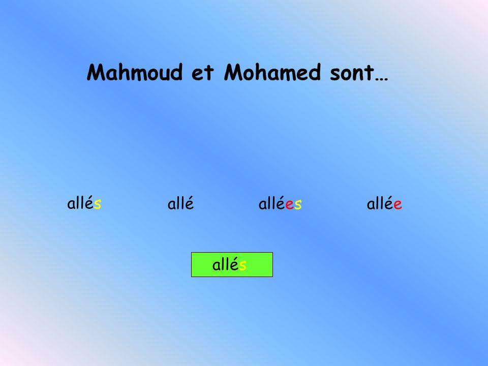 Mahmoud et Mohamed sont…