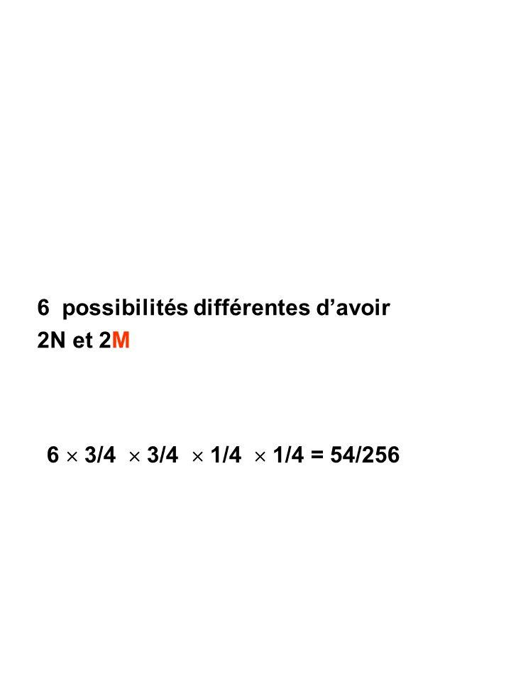 6 possibilités différentes d'avoir 2N et 2M