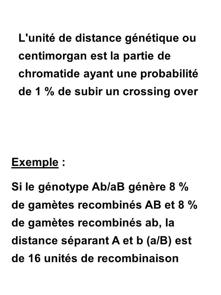 L unité de distance génétique ou centimorgan est la partie de chromatide ayant une probabilité de 1 % de subir un crossing over