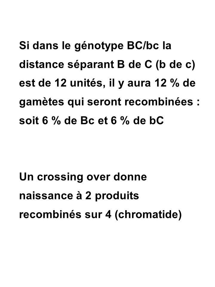 Si dans le génotype BC/bc la distance séparant B de C (b de c) est de 12 unités, il y aura 12 % de gamètes qui seront recombinées : soit 6 % de Bc et 6 % de bC Un crossing over donne naissance à 2 produits recombinés sur 4 (chromatide)