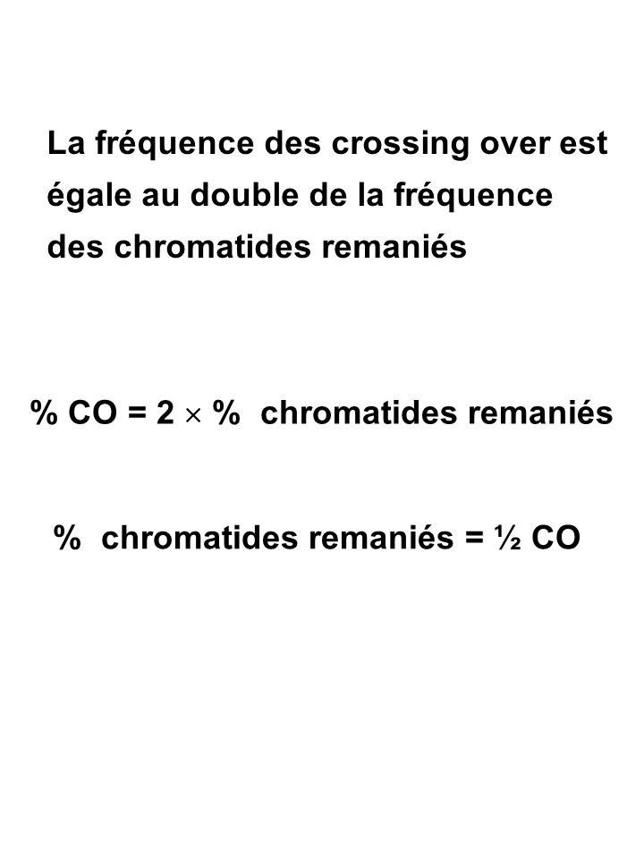 % CO = 2  % chromatides remaniés % chromatides remaniés = ½ CO