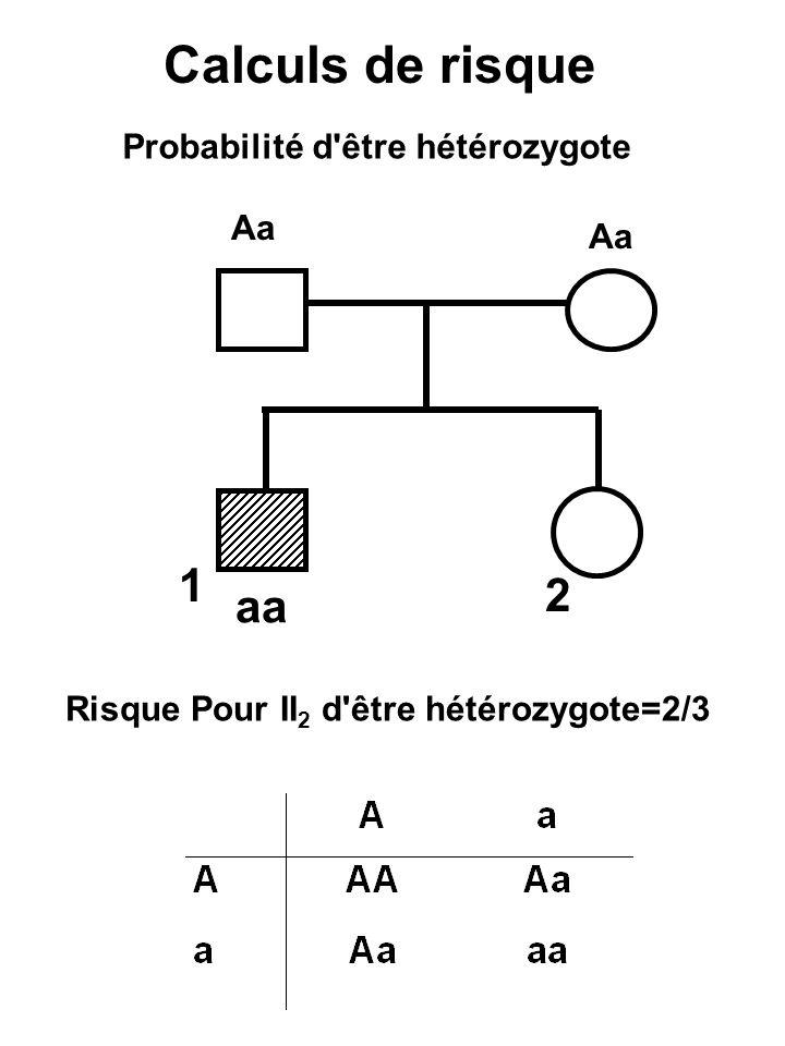 Calculs de risque 1 2 aa Probabilité d être hétérozygote Aa Aa
