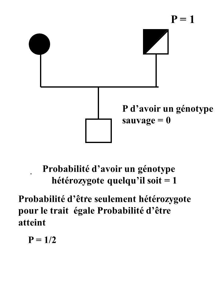 Probabilité d'avoir un génotype hétérozygote quelqu'il soit = 1