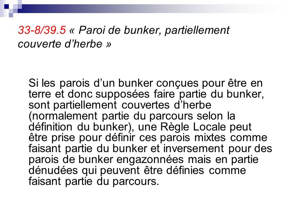 33-8/39.5 « Paroi de bunker, partiellement couverte d'herbe »