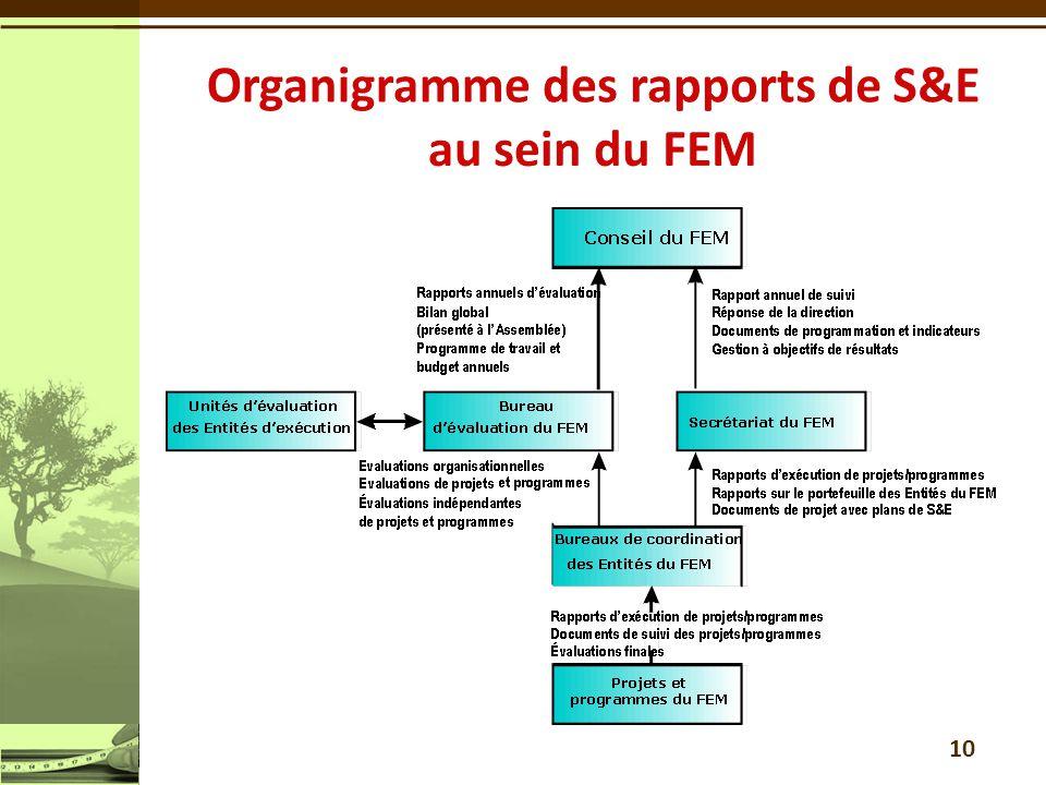 Organigramme des rapports de S&E au sein du FEM