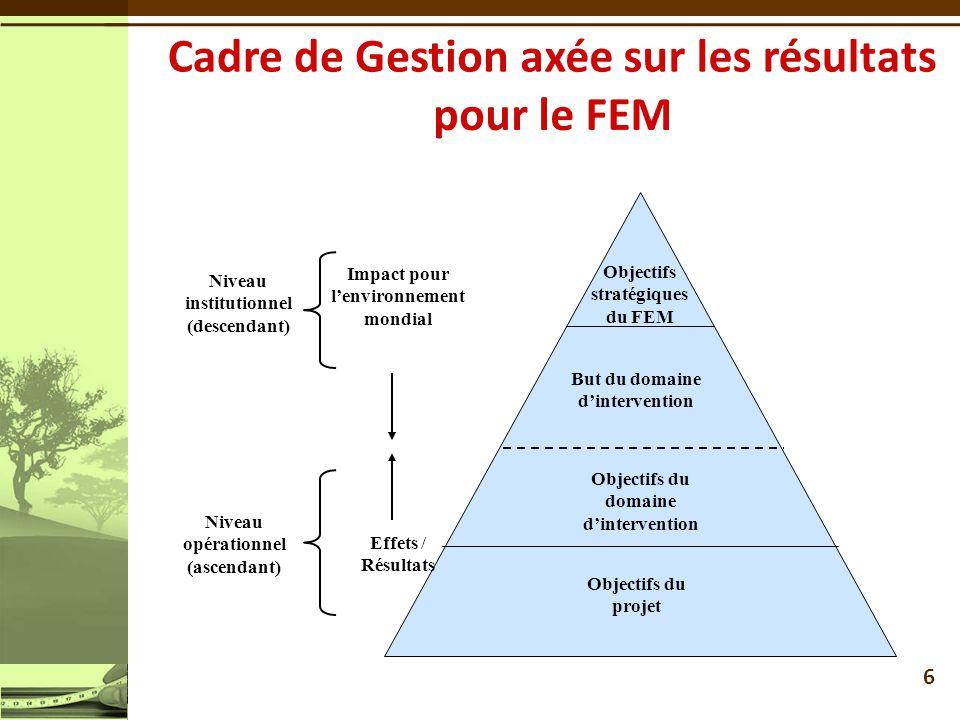 Cadre de Gestion axée sur les résultats pour le FEM