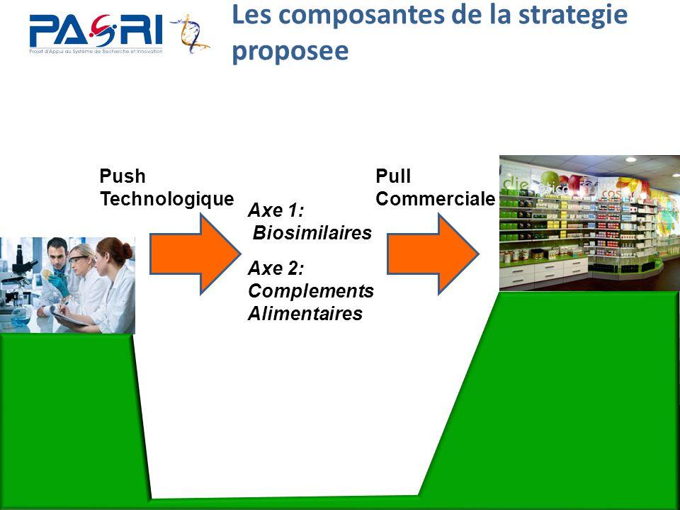 Les composantes de la strategie proposee